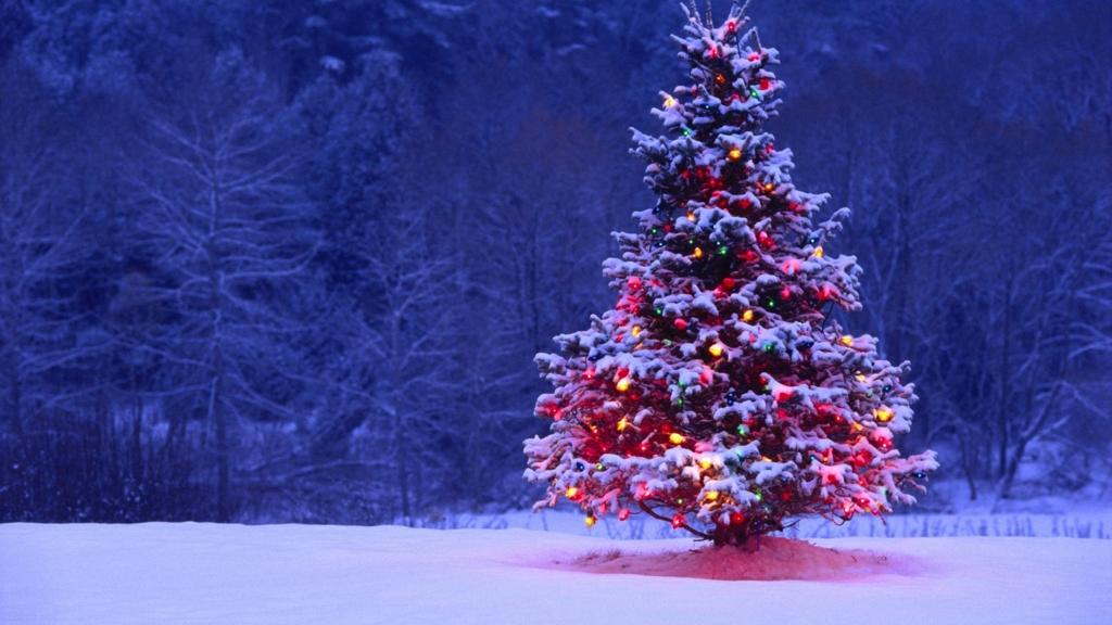 クリスマスイブを上司と二人っきりで過ごした話 - わんわんらんど