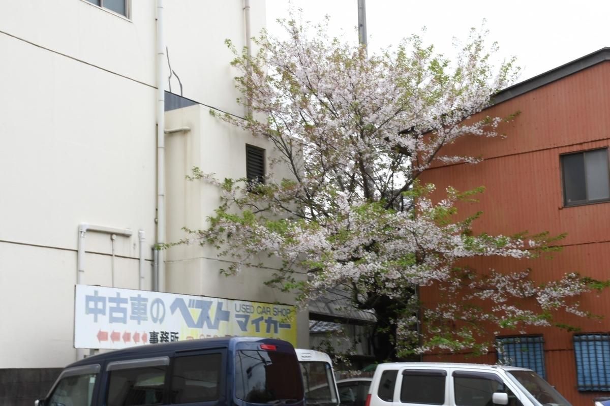 f:id:itasan-kibunyasan:20200417230811j:plain
