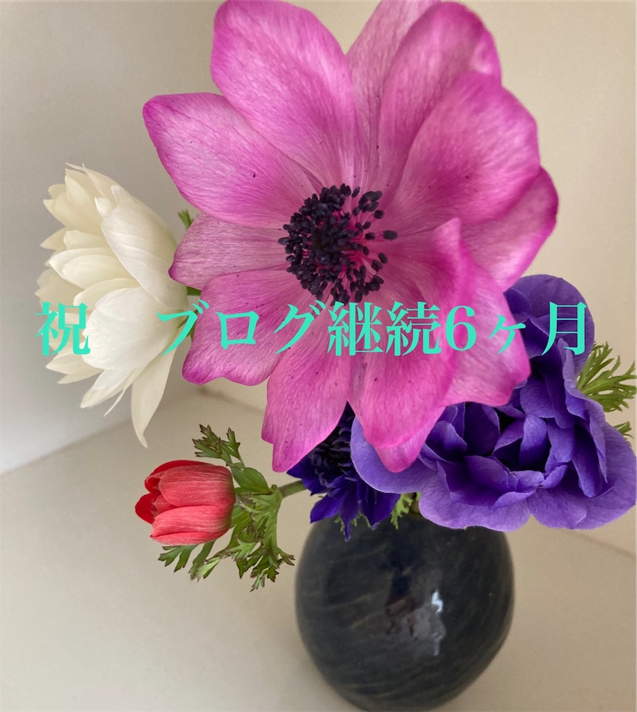 f:id:itashima:20210414112729j:image