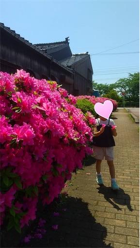 f:id:itashima:20210516091651j:image
