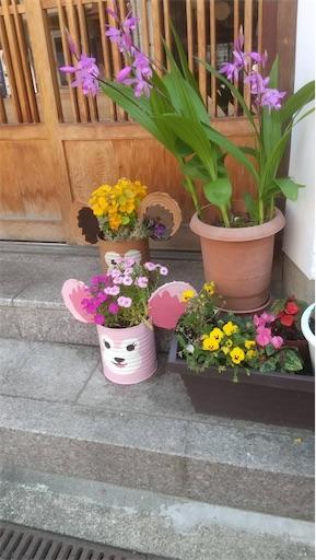 f:id:itashima:20210516091708j:image