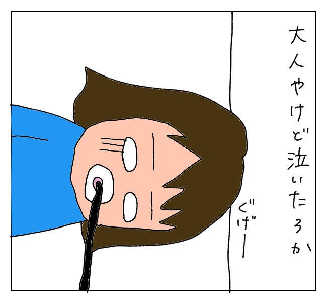 f:id:itchan123:20210502173447j:plain