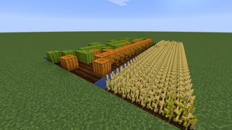 マイクラ 作物
