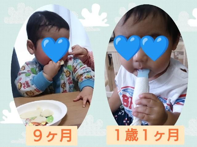 f:id:itochima:20210112232724j:image