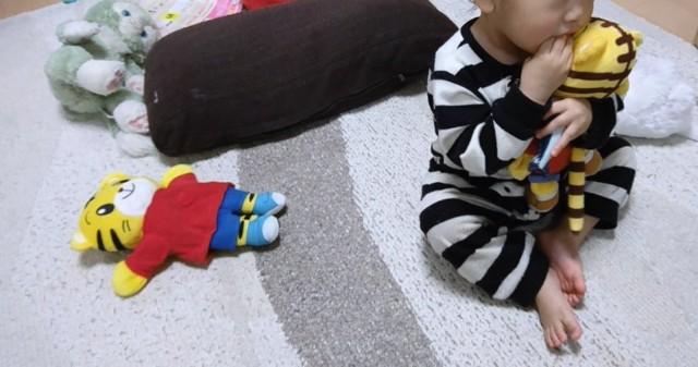 f:id:itochima:20210324085228j:image