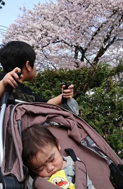 f:id:itochima:20210401214101j:image