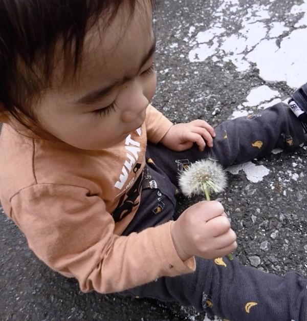 f:id:itochima:20210416000421j:image
