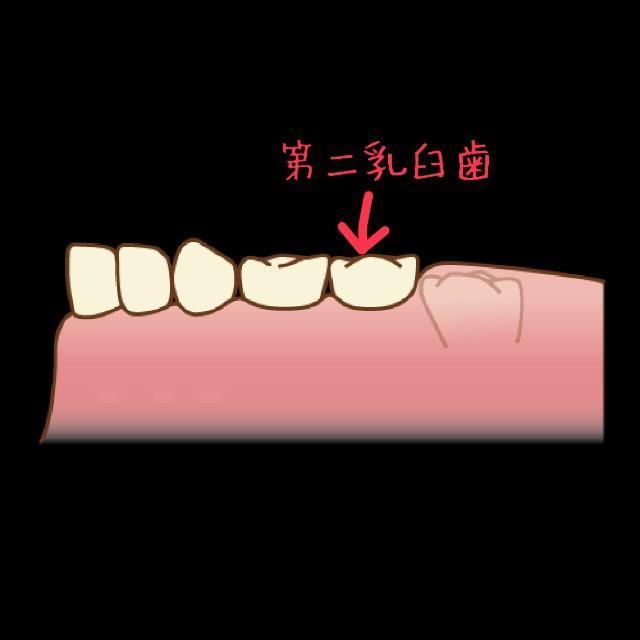 f:id:itochima:20210524002414j:image