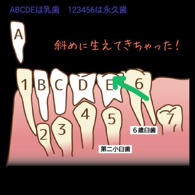f:id:itochima:20210524080757j:image