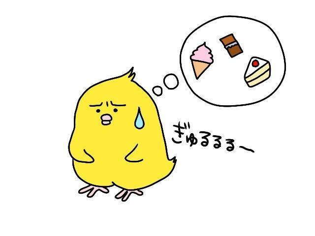 f:id:itochima:20210812233023j:image