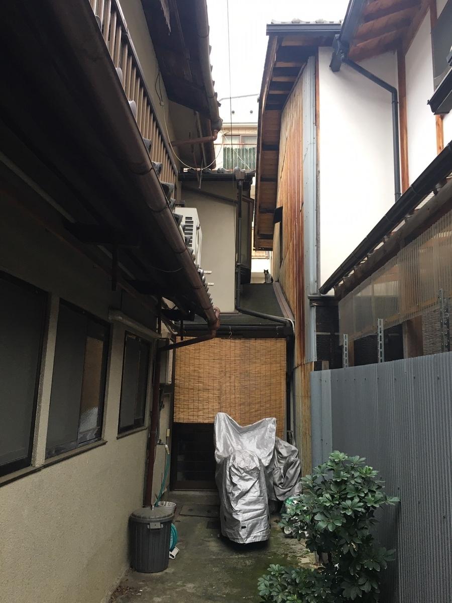 f:id:itoguchi-re:20191130114236j:plain