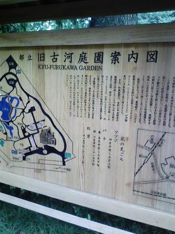 f:id:itokoichi:20080607153450j:image