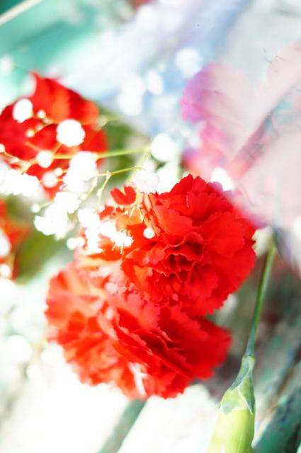 f:id:itokoichi:20130512140951j:image:w240