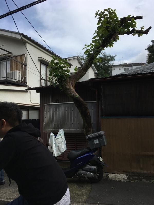 f:id:itokoichi:20171008170421j:plain