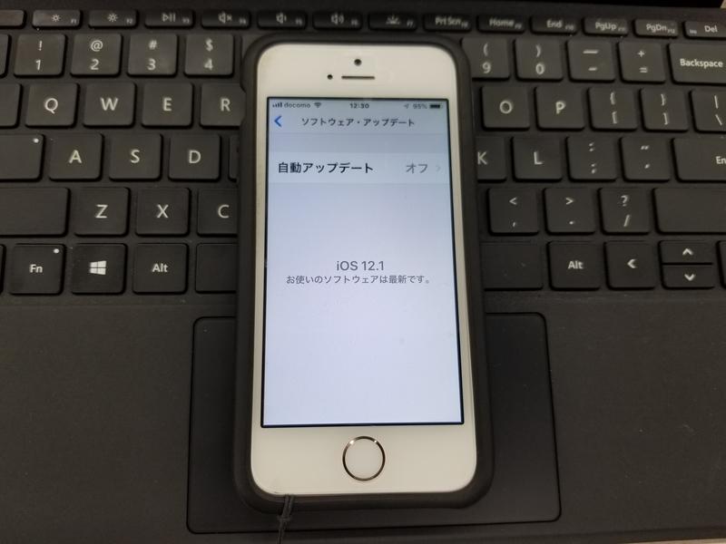 f:id:itokoichi:20181108125055j:plain