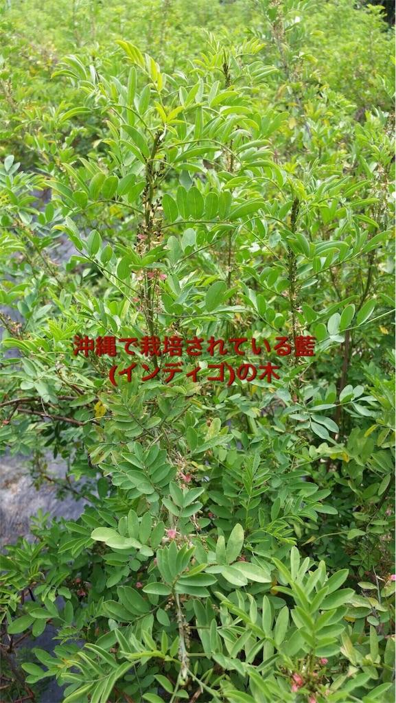 f:id:itomakimaki523:20170208151132j:image