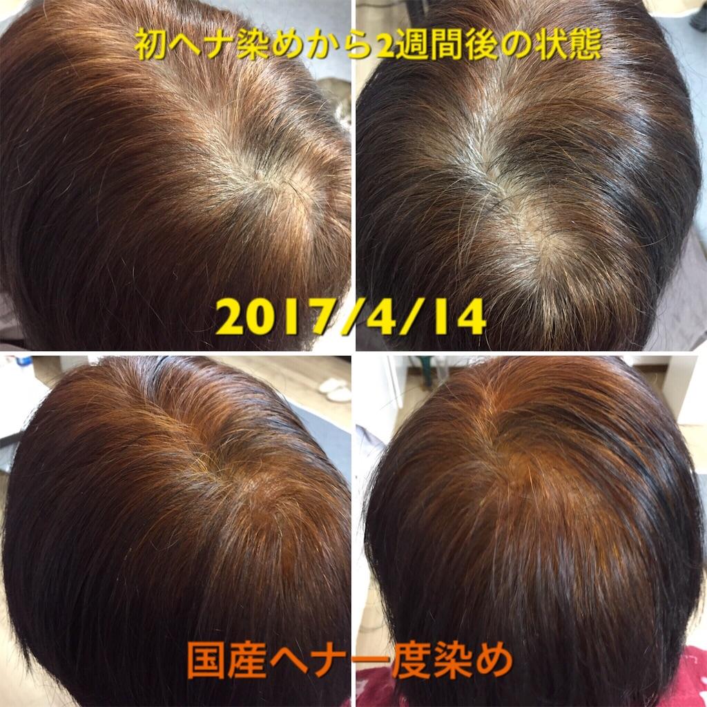 f:id:itomakimaki523:20170416202056j:image
