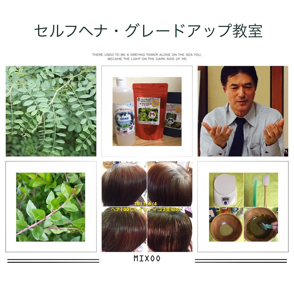 f:id:itomakimaki523:20170619195132j:image