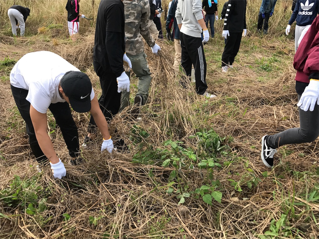 f:id:itoshima55:20171115134300j:image