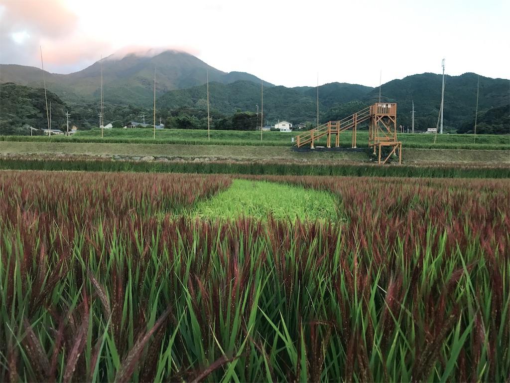 f:id:itoshima55:20171206142612j:image
