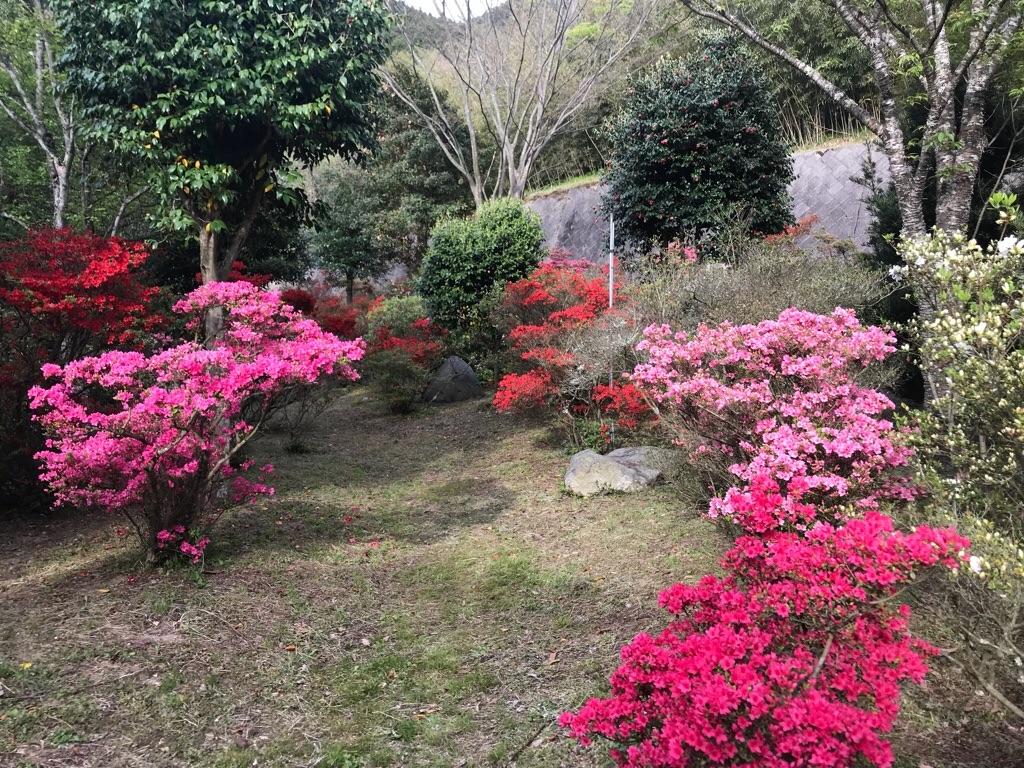 f:id:itoshima55:20180416155218j:image