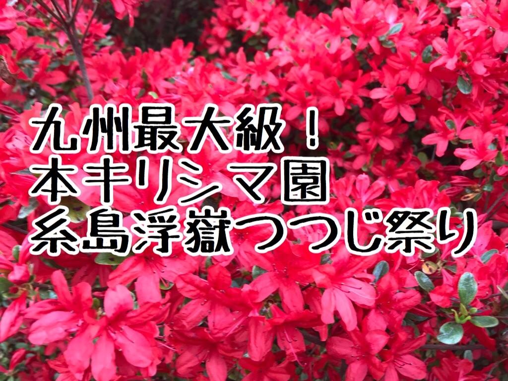 f:id:itoshima55:20180416160202j:image