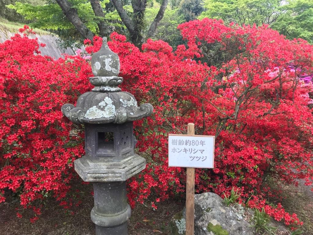 f:id:itoshima55:20180417105953j:plain