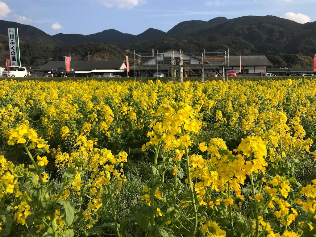 f:id:itoshima55:20180605210713j:image