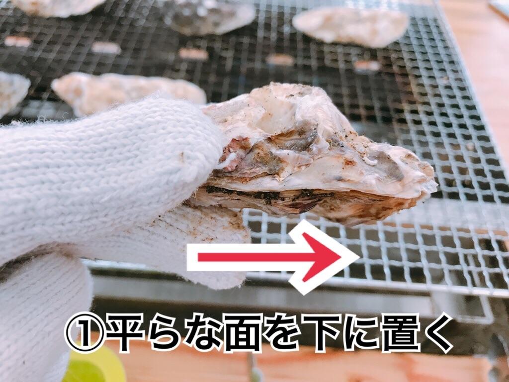 f:id:itoshima55:20181128101325j:image