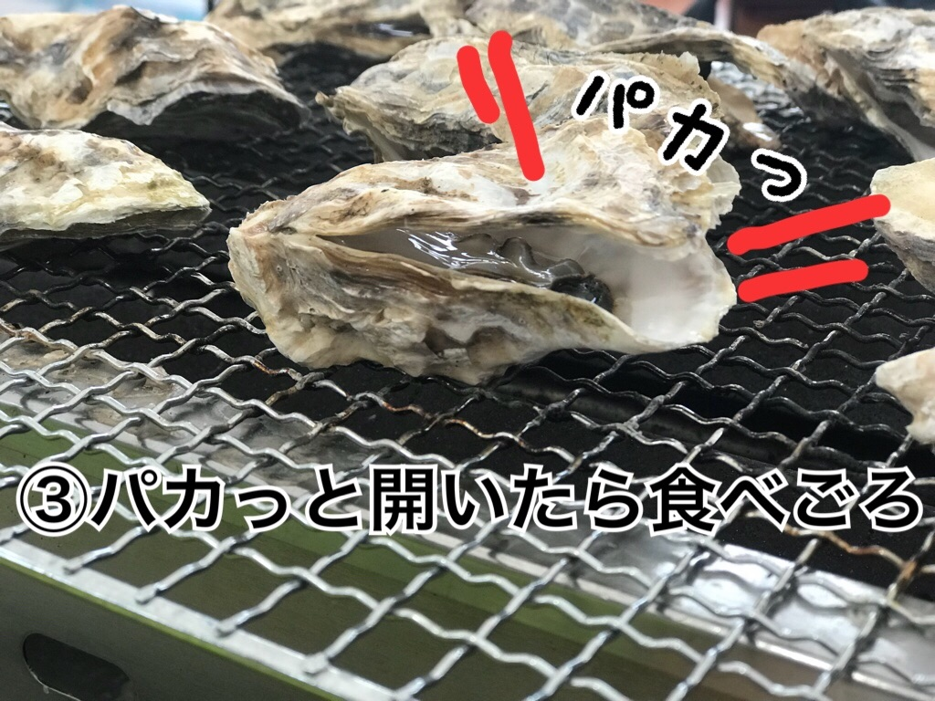 f:id:itoshima55:20181128101403j:image