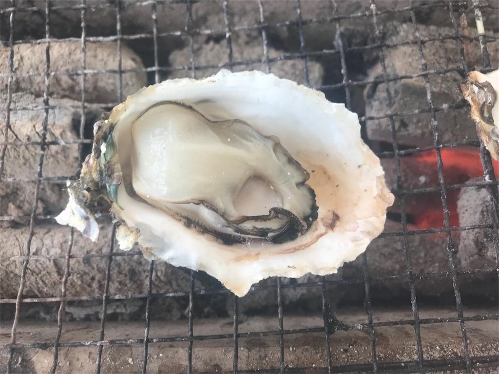 f:id:itoshima55:20190120194153j:image