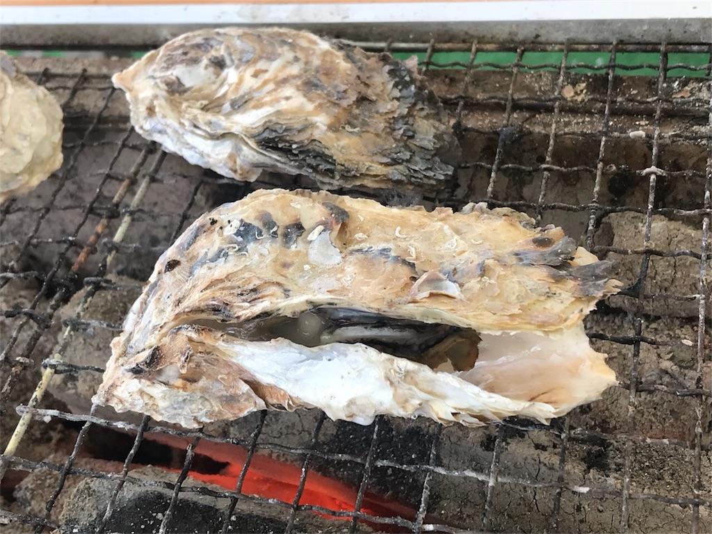 f:id:itoshima55:20190120194205j:image