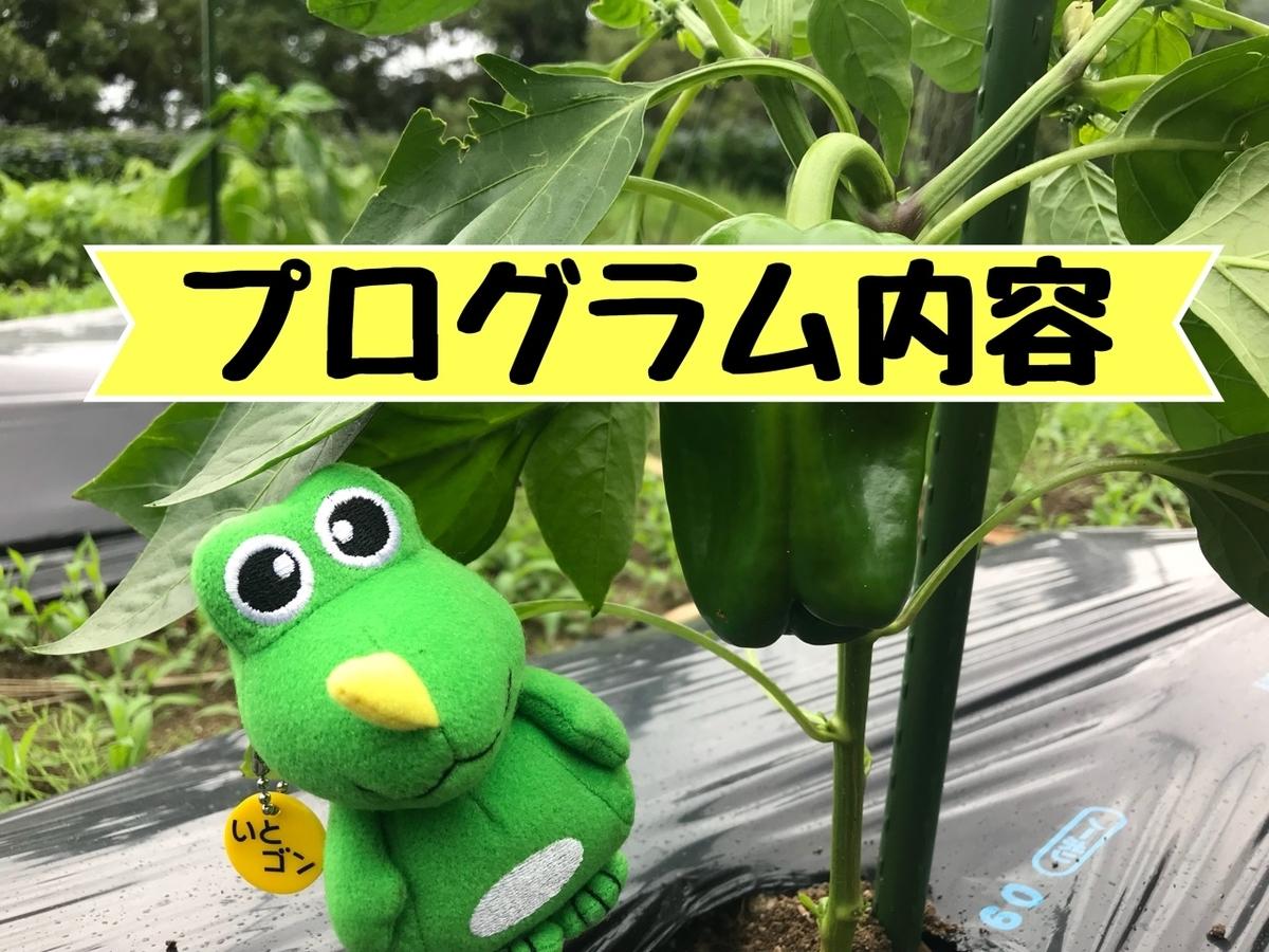 f:id:itoshima55:20190621131828j:plain