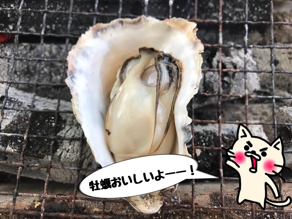f:id:itoshima55:20190811225400j:image