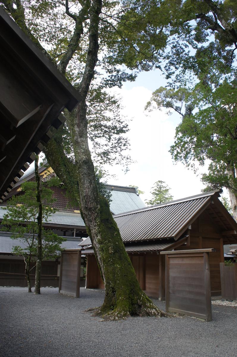 f:id:itoshiya8ise:20200624085159j:plain