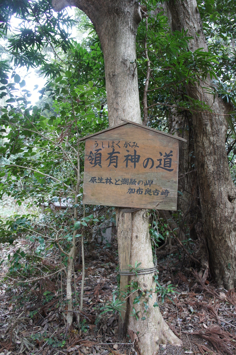 f:id:itoshiya8ise:20201019120002j:plain