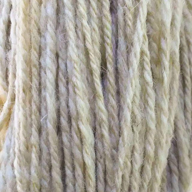 よりどめチュー。砂色のスペイン産メリノちゃん。コツコツ紡いで、今はぶら下がって素直な毛糸になるべく修行の身。#糸紡ぎ
