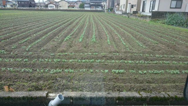 f:id:itoukenzi1999:20180613134743p:plain