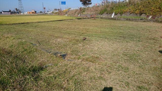f:id:itoukenzi1999:20181109173001p:plain