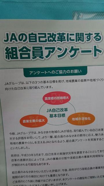 f:id:itoukenzi1999:20181212195720p:plain