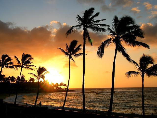 子連れでハワイにいって「心配だった5つのこと」について