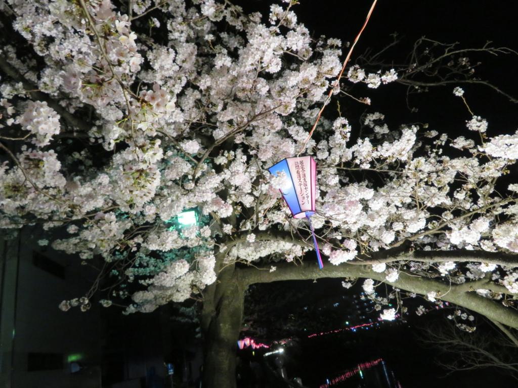 f:id:itsukofumiaki:20180327222047j:plain