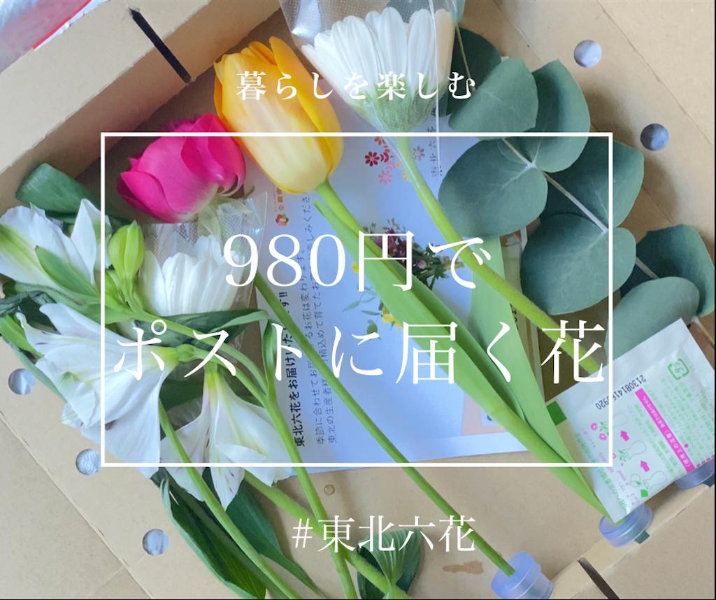 f:id:itsumiusui:20210215220056p:image