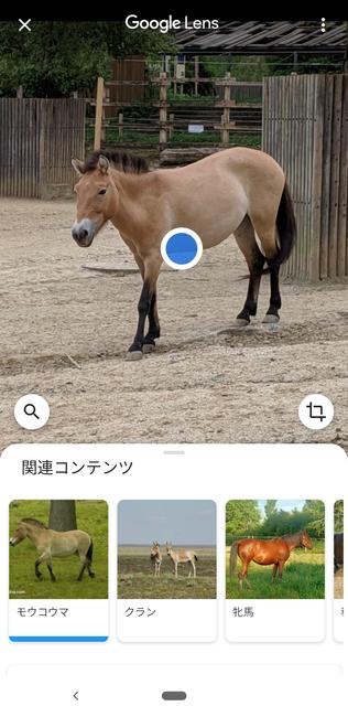 f:id:itsuwalove777:20191208134340p:plain