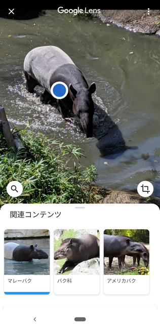 f:id:itsuwalove777:20191208134535p:plain