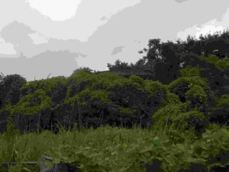f:id:ituki:20170826145352j:image:w240