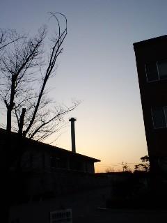 20100115171614