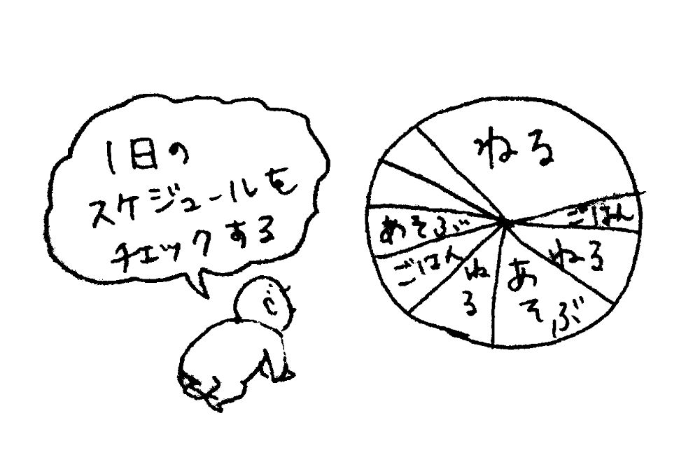 f:id:iwadetomoko:20170311094432j:plain