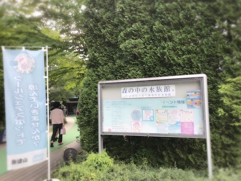 f:id:iwai-asumi:20170805204150j:image