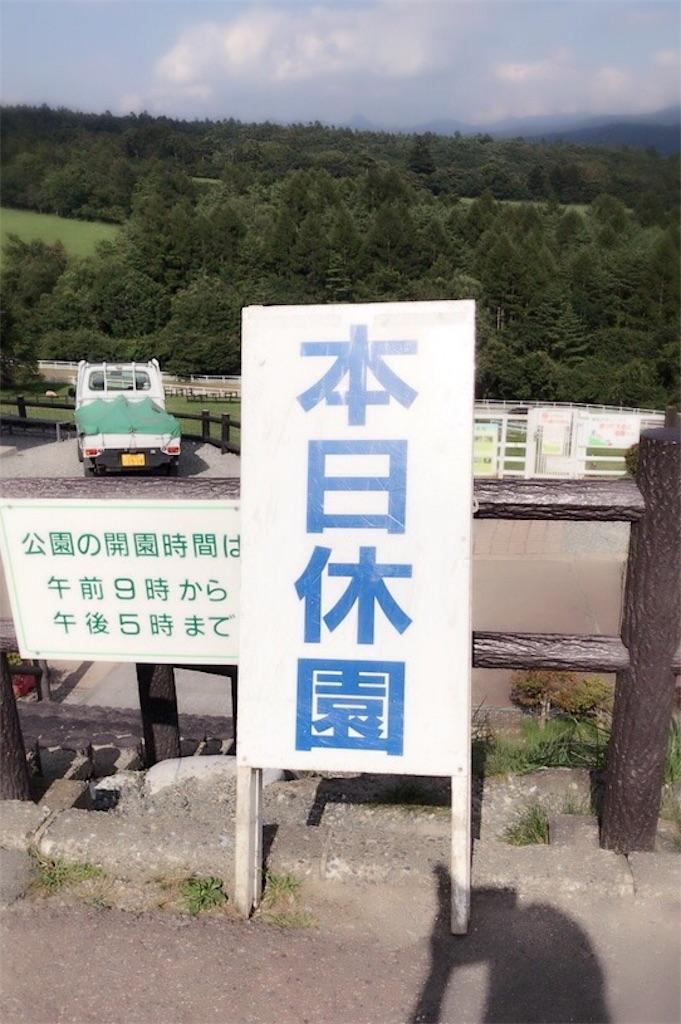 f:id:iwai-asumi:20170828204046j:image